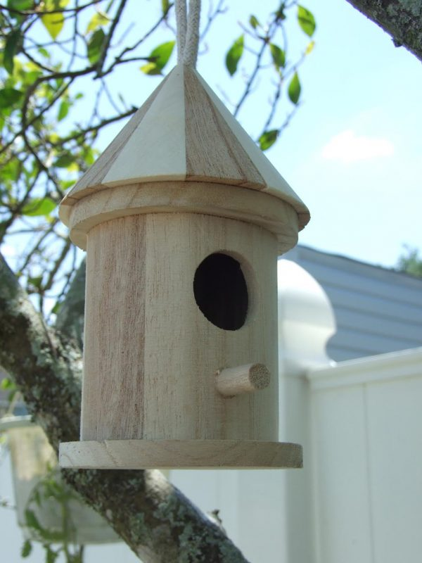 Tips Cool Bird Houses Plansbirdcage Design Ideas Medium