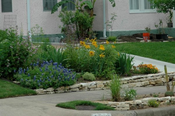 Tips Landscaping For Sidewalks With Curbside Landscape Ideas Medium