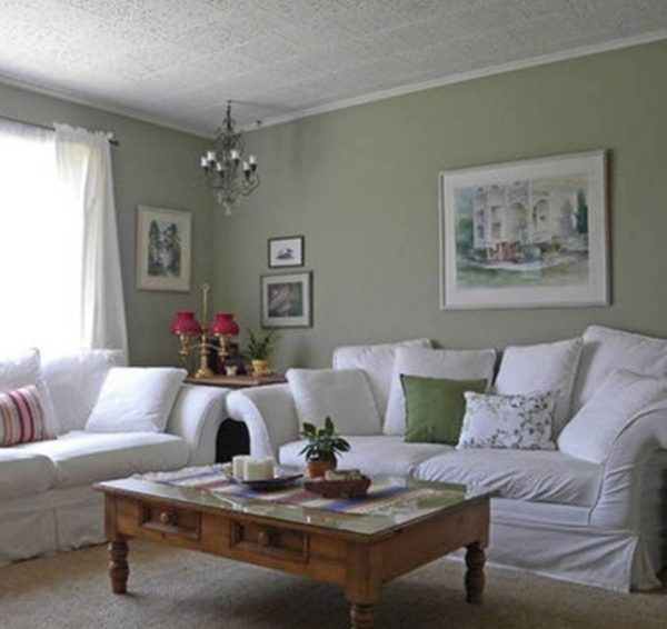 Tips Sage Green Living Roomroom Ideas