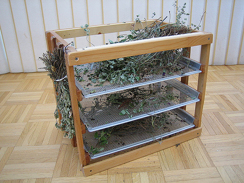 Top Herb Dryinga Little Homemade Rack I Made For Catherine Medium