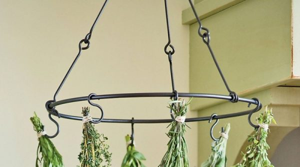 We Share 7 Essential Items For Diy Herb Preparation The Kitchenist Medium