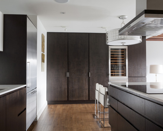 we share cabinets contemporary kitchen with a dark stained