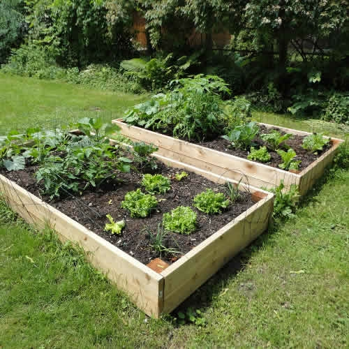 We Share Raised Garden Beds 8ft X 4ft Tanalised Timber Medium