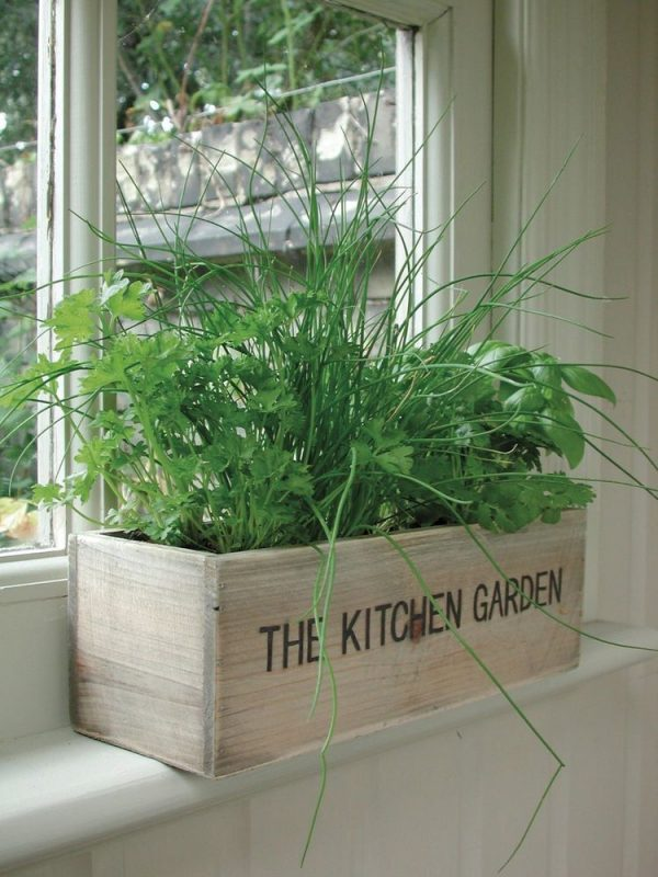 We Share Unwins Herb Kitchen Garden Kit Grow Your Own Wooden Pots Medium