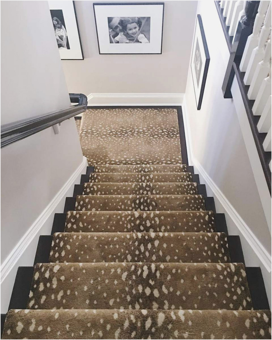 get installing flor carpet tiles on stairsreview home co