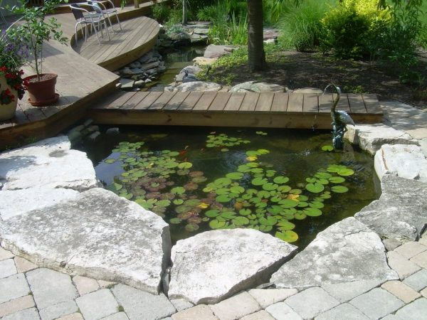 Best Decking Over Pond Patio Eclectic With Stone Pathway Garden Medium
