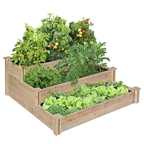 Collection Vegetable Planter Boxes Amazoncom Medium