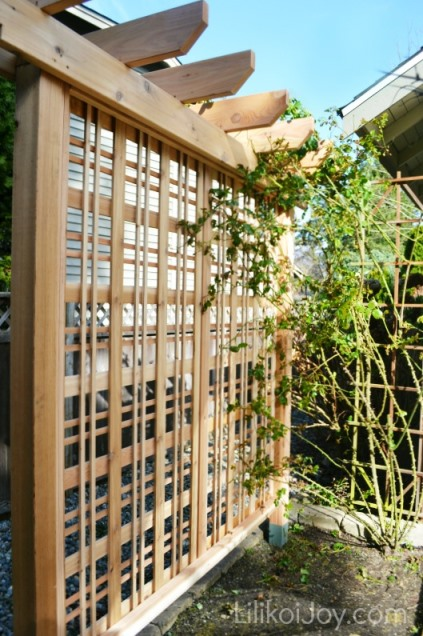Example Of A Beautiful Garden Trellis For Climbing Roses Or Vines Medium