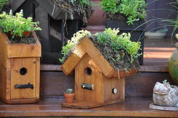 Example Of A Bird Houses Decorating Ideasbirdcage Design Ideas Medium