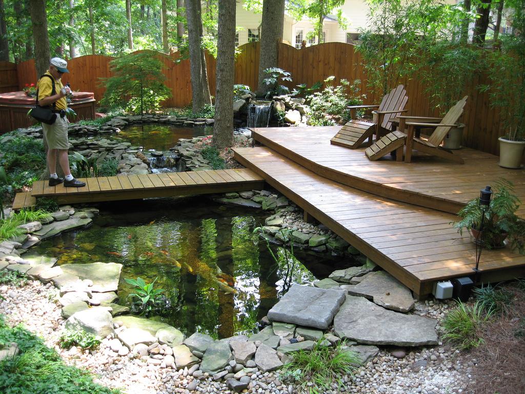 inspirational terrific koi pondand great place to enjoy nature