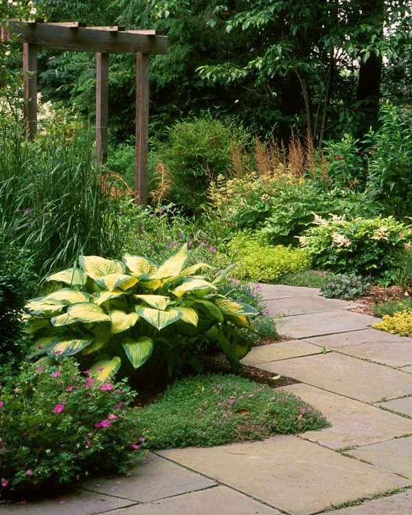 our favorite how to create a successful hardscapehgtv medium