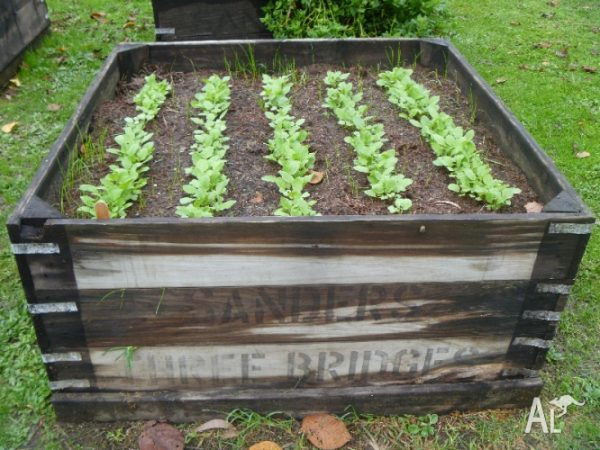 Our Favorite Raised Veggie Garden Planter Box For Sale In Gilderoy Medium