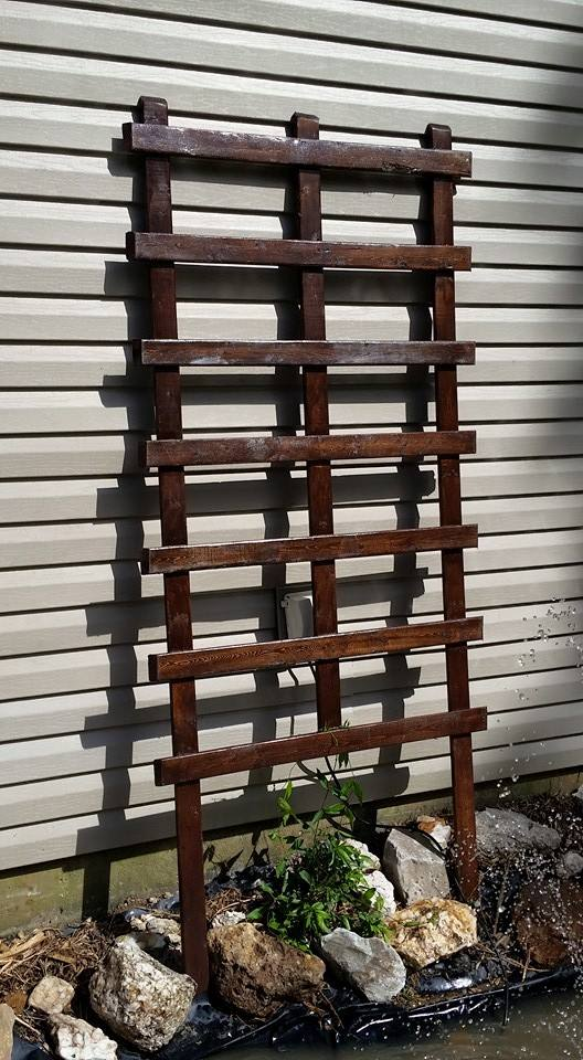 Simply Easy Diy Trellis For Climbing Plants And Vines Medium