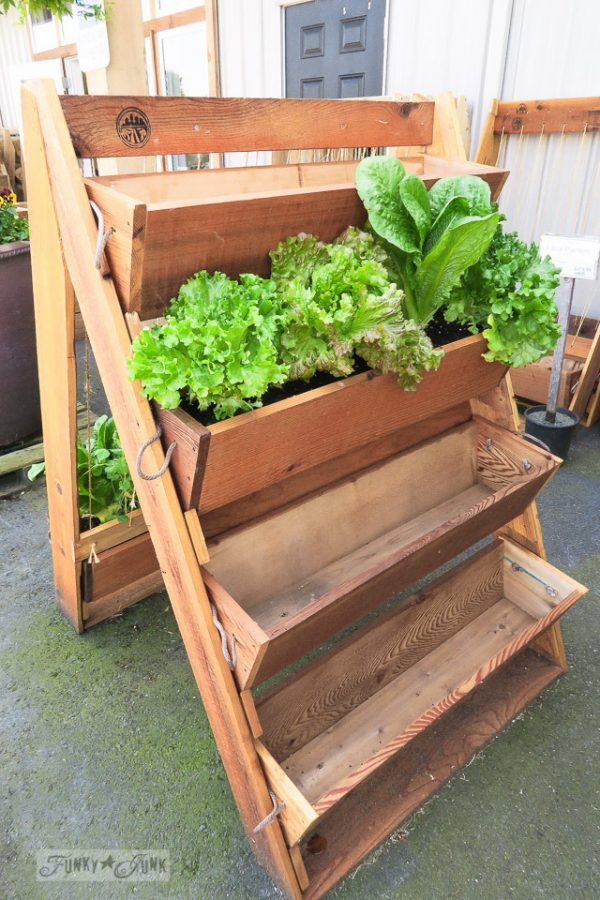 We Share Genius Planter Boxes A Great New Weeder And Flowersfunky Medium