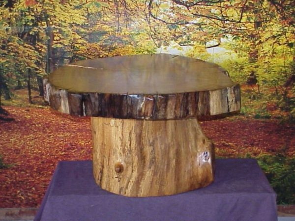 Bore Tree Stump End Table Pottery Barn House Design Medium