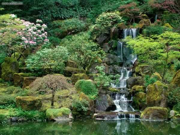 Browse Japanese Garden Perthjapanese Landscape Designjapanese Medium