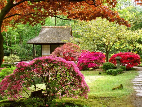 Clever 28 Beautiful Gardens Like Dreammostbeautifulthings Medium