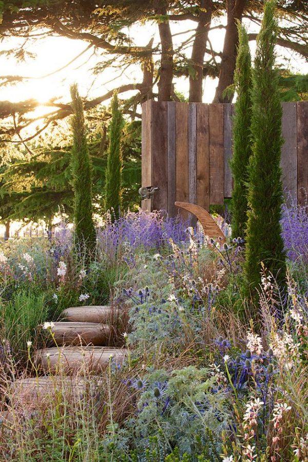 Creative Garden Design Mediterranean Garden Plants   Rhs Gardening Medium