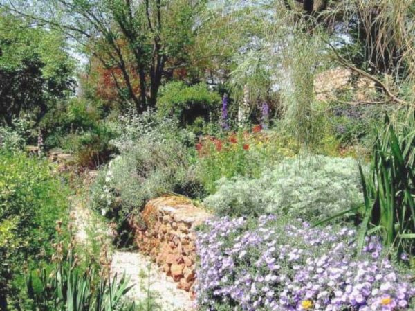 Perfect Mediterranean Garden Plants With Stone Bordergreat Medium