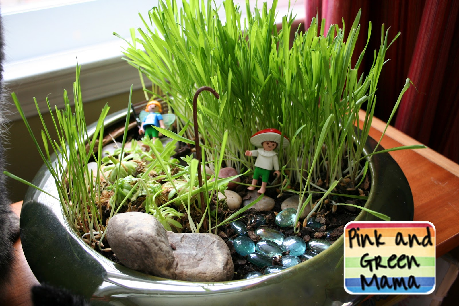 perfect pink and green mama   indoor cat fairy garden