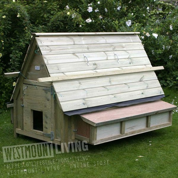 Best 30 Bird Large Chicken House Westmount Living Medium