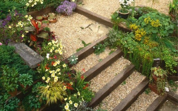 Best How To Plant A Steep Sunny Bankthe Telegraph Medium