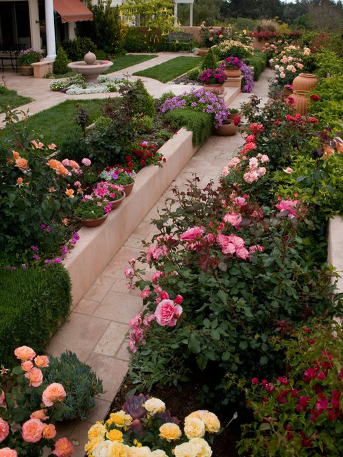 Bore Rose Garden Home Design Ideas Pictures Remodel And Decor Medium
