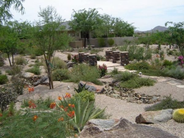 Clever Desert Landscaping Ideas Medium