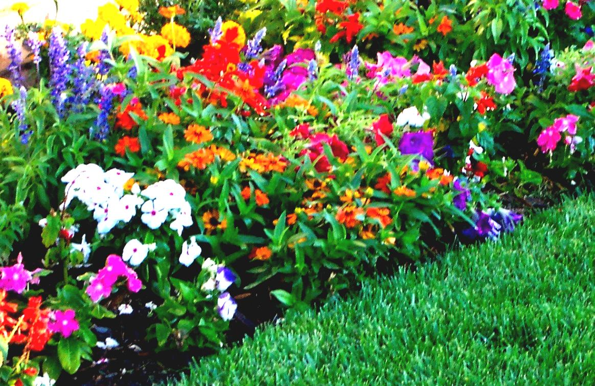 clever entrancing design flower bed ideas comes with rectangle