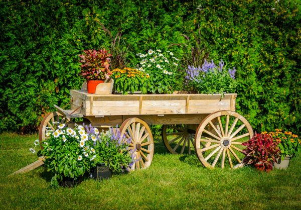 Collection Cheap Rustic Garden Decorations Medium