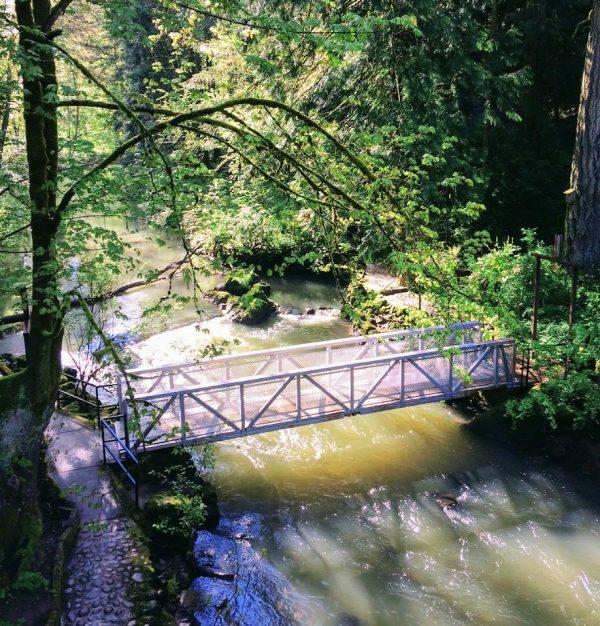 Collection Why Prosper Portland Invests In Leach Botanical Garden Medium