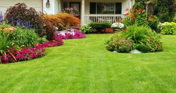 Creative 11 Beautiful Rose Garden Designs For Small Yard Medium