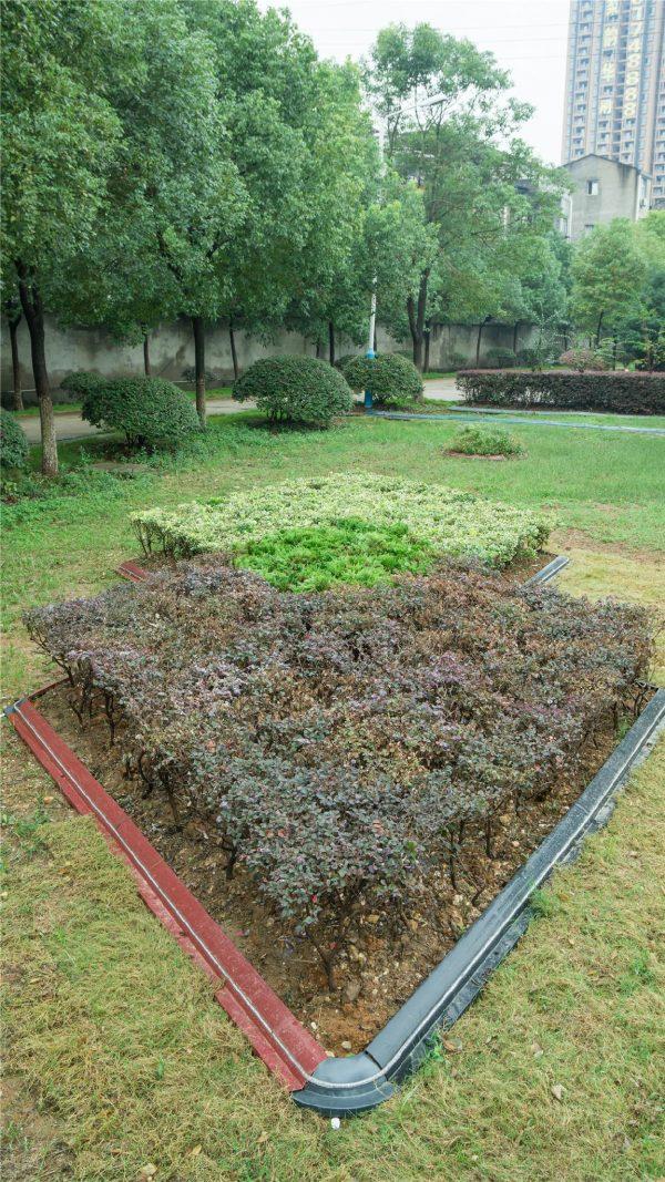 Creative Top Fence Edging Garden Border Fence Lawn Edging China Medium