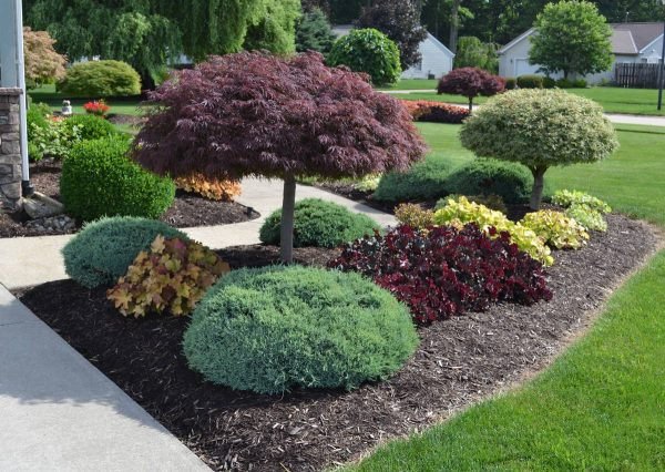 Example Of A 23 Landscaping Ideas With Photos Medium