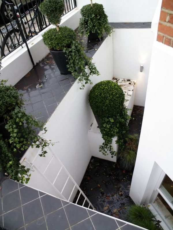 Explore A Feature Is Made Of This Open Lightwell In A Small London Medium