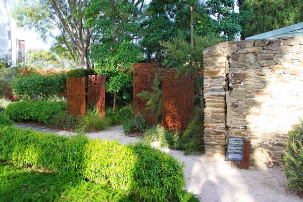 Explore Australian Native Garden Adelaide Botanic Gardens Adelaide Medium