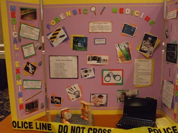 Explore Pin By Norma Barboza On Hosa Career Display Medium