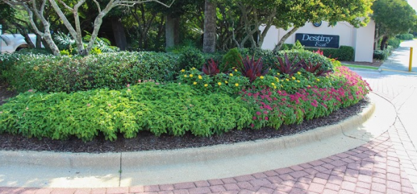 fresh 5 cantmiss commercial landscaping ideas for business medium