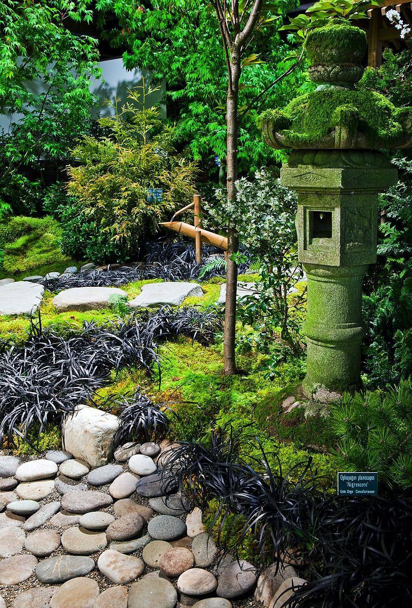 fresh japanese zen gardens