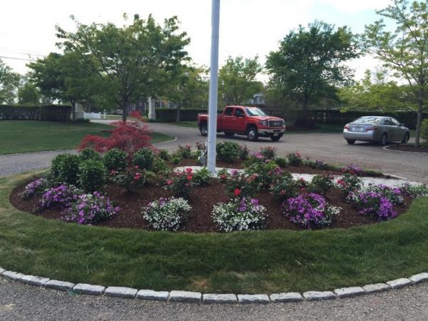 Get 10 Best Culdesac Landscaping Images On Diy