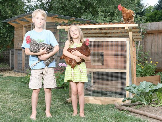 Get Best 20  Mobile Chicken Coop Ideas On Chicken Medium