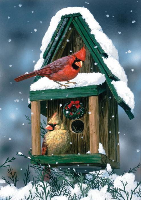 Get Toland Cardinals In Snow Garden Flag Medium