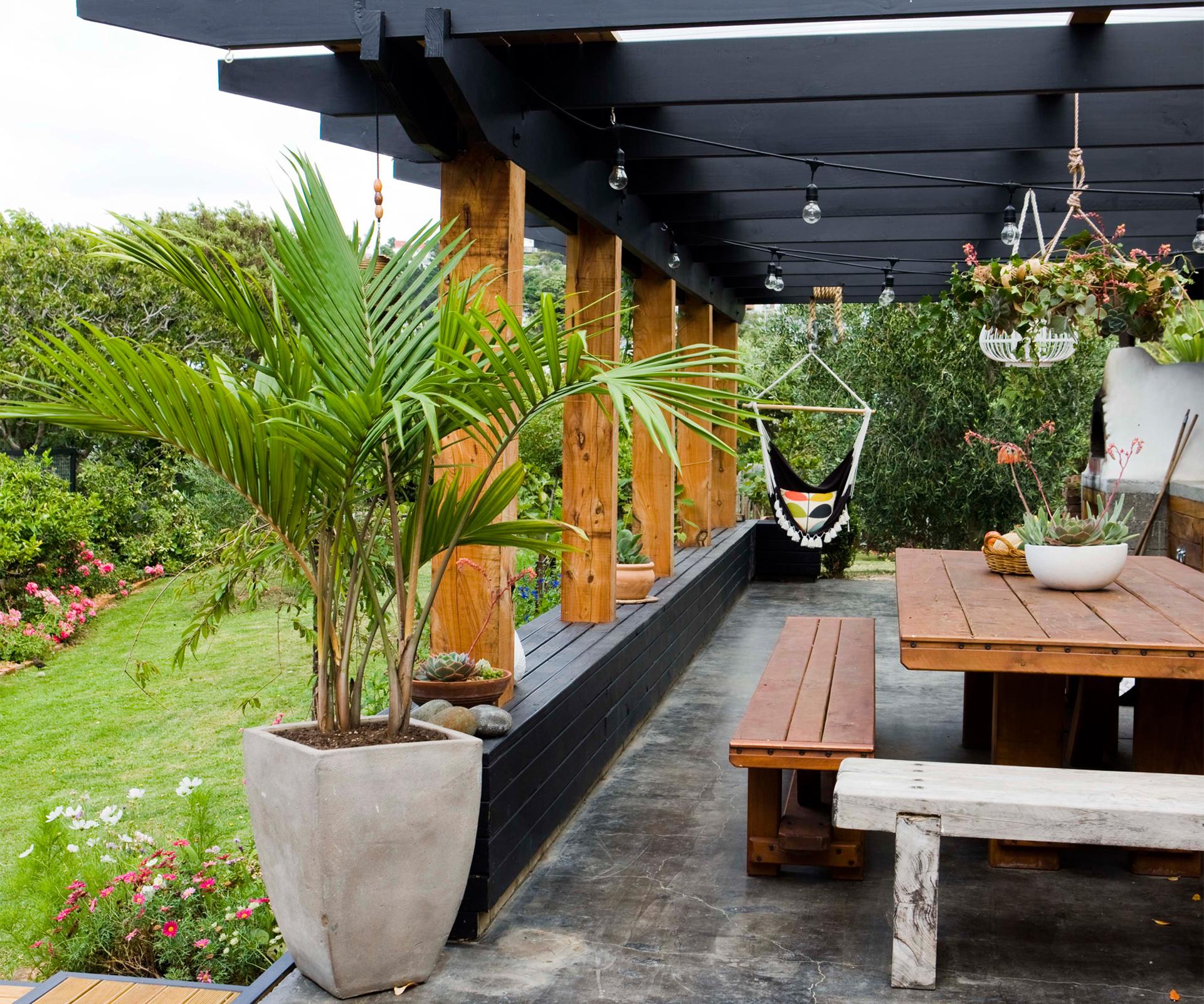 innovative a neglected wellington backyard becomes a flourishing garden
