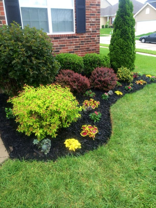 Inspiration Beautiful Flowerbed  Black Mulch Made A Big Difference Medium