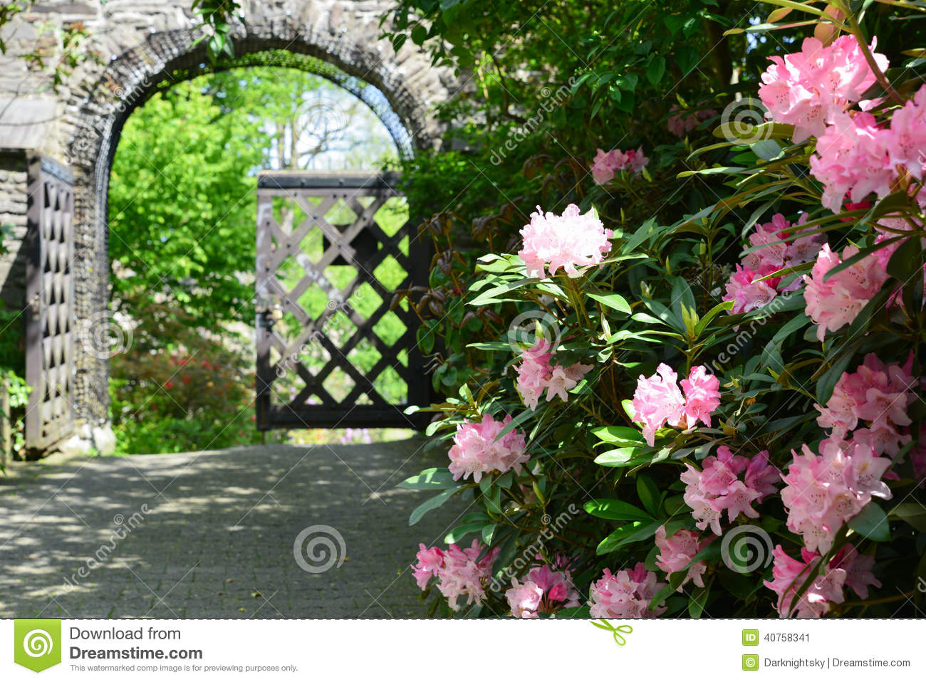 inspiration castle rhododendron stock photo image 40758341
