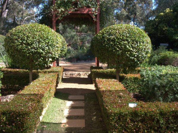 Inspirational The New Formal Garden With Australian Plantsgardening Medium