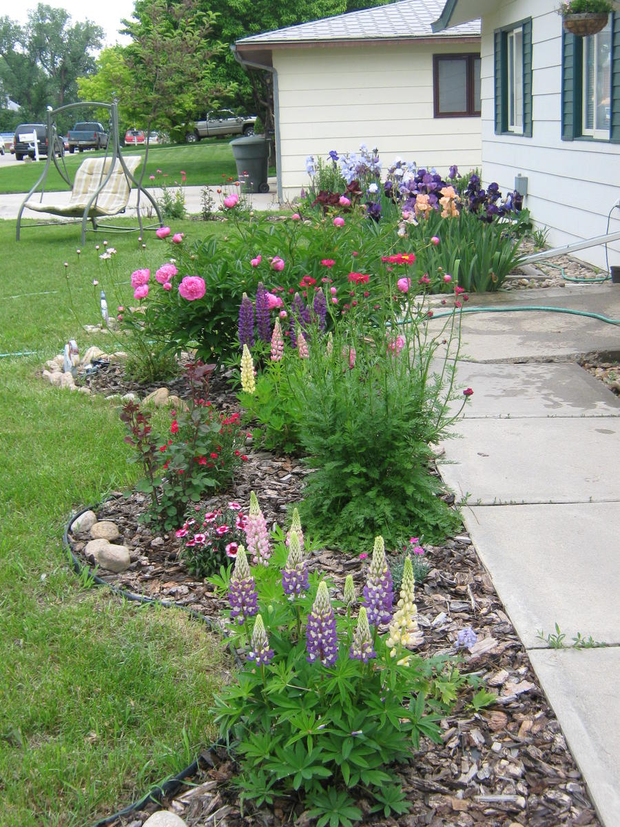 looking captivating design flower bed ideas features notched shape