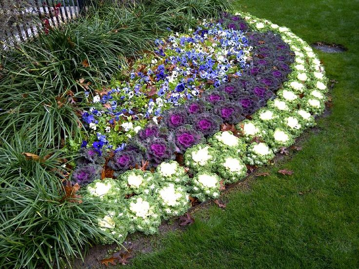 looking flower bed ideas for full sun pictures beautiful black