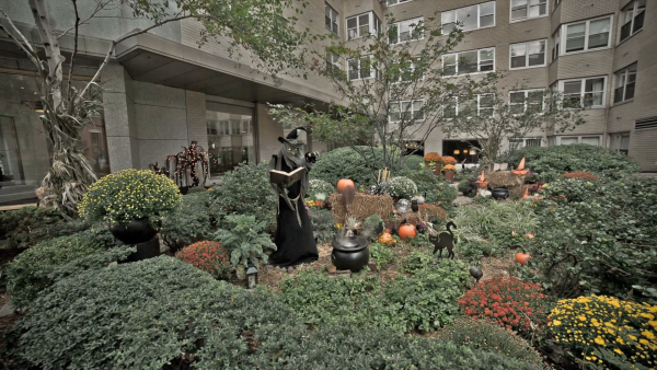 Our Favorite Scary Witch Casting Spells In Spooky Garden Halloween Medium