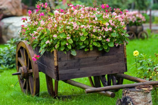 Perfect Great Ways To Keep Your Garden Flourishing Brant Florist Medium